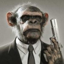 Profile picture of Officer Evil Monkey